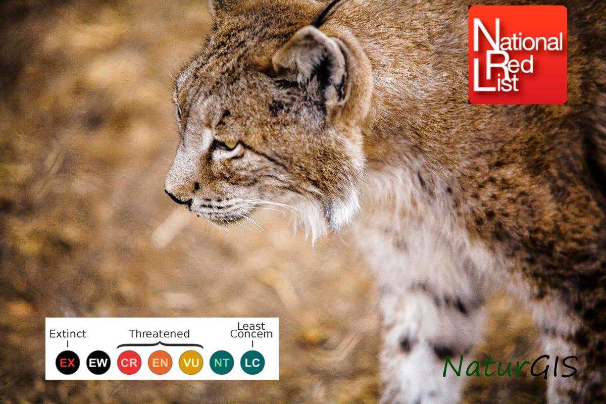 Categorías de amenaza de la UICN: El Lince Ibérico