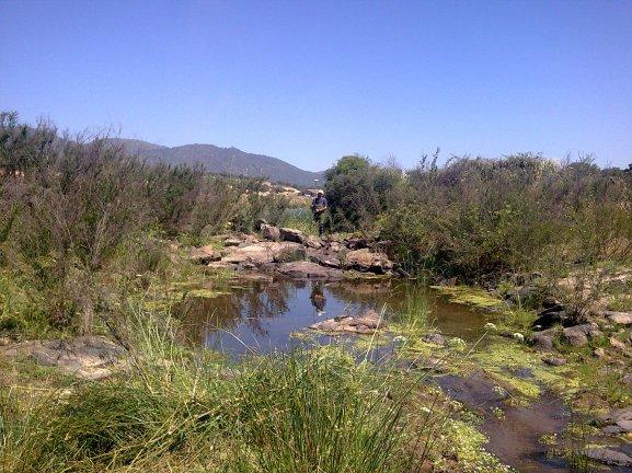 NaturGIS Caudales Ecológicos