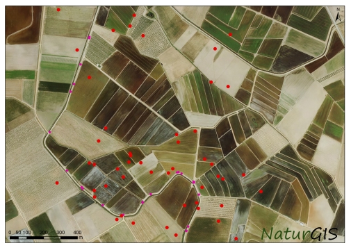 Datos SIG en campo NaturGIS Fauna