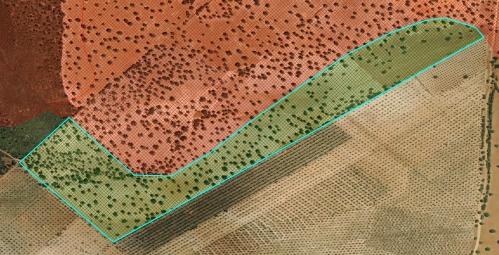 Dehesa Extremadura NaturGIS Dron Cartografía ajuste actualización