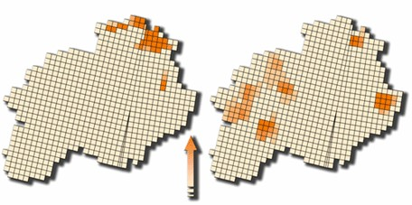 Hotspot de Mariposas y Aves en el proyecto ECCOMAP