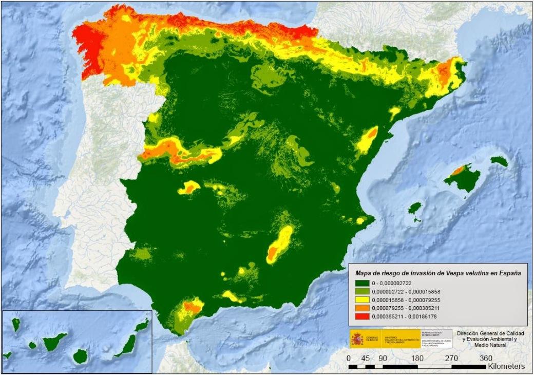 Mapa de riesgo de intruducción de la Avisa asiática Vespa vetulina en España. MMA