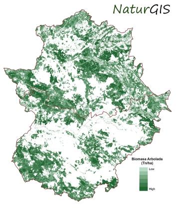 Cartografía SIG de la Biomasa Arbolada para Centrales Térmicas en Extremadura