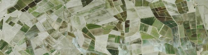Ecología del Paisaje con Fragstats en Extremadura