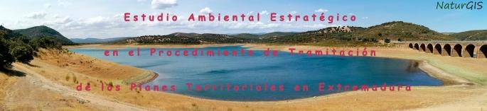 Estudio Ambiental Estratégico en la Evaluación Ambiental Estratégica