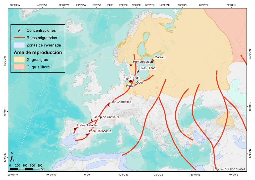 Distribución de la Grulla común en Europa